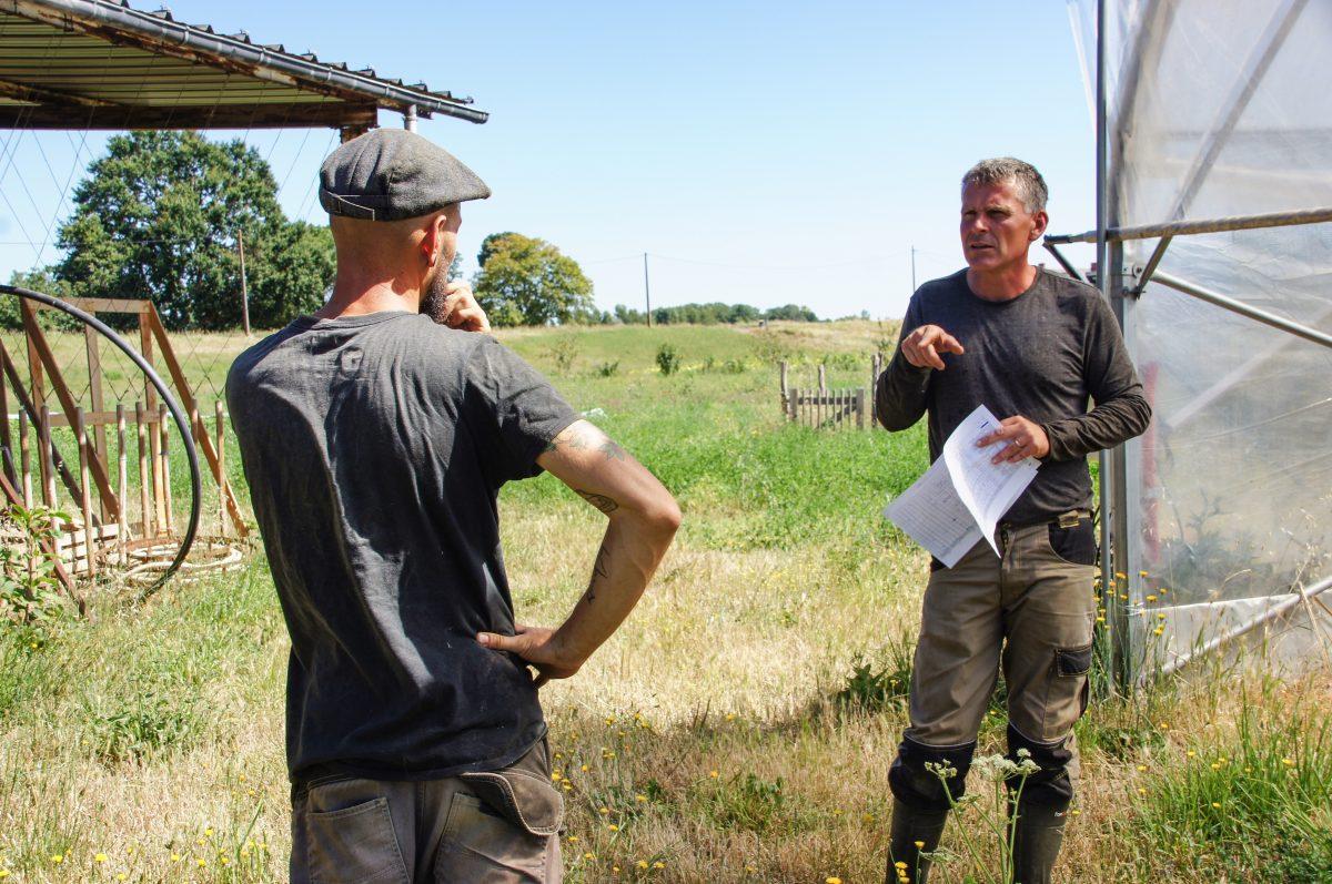 Reconversion : Sylvain, ancien ingénieur, nouveau maraîcher bio