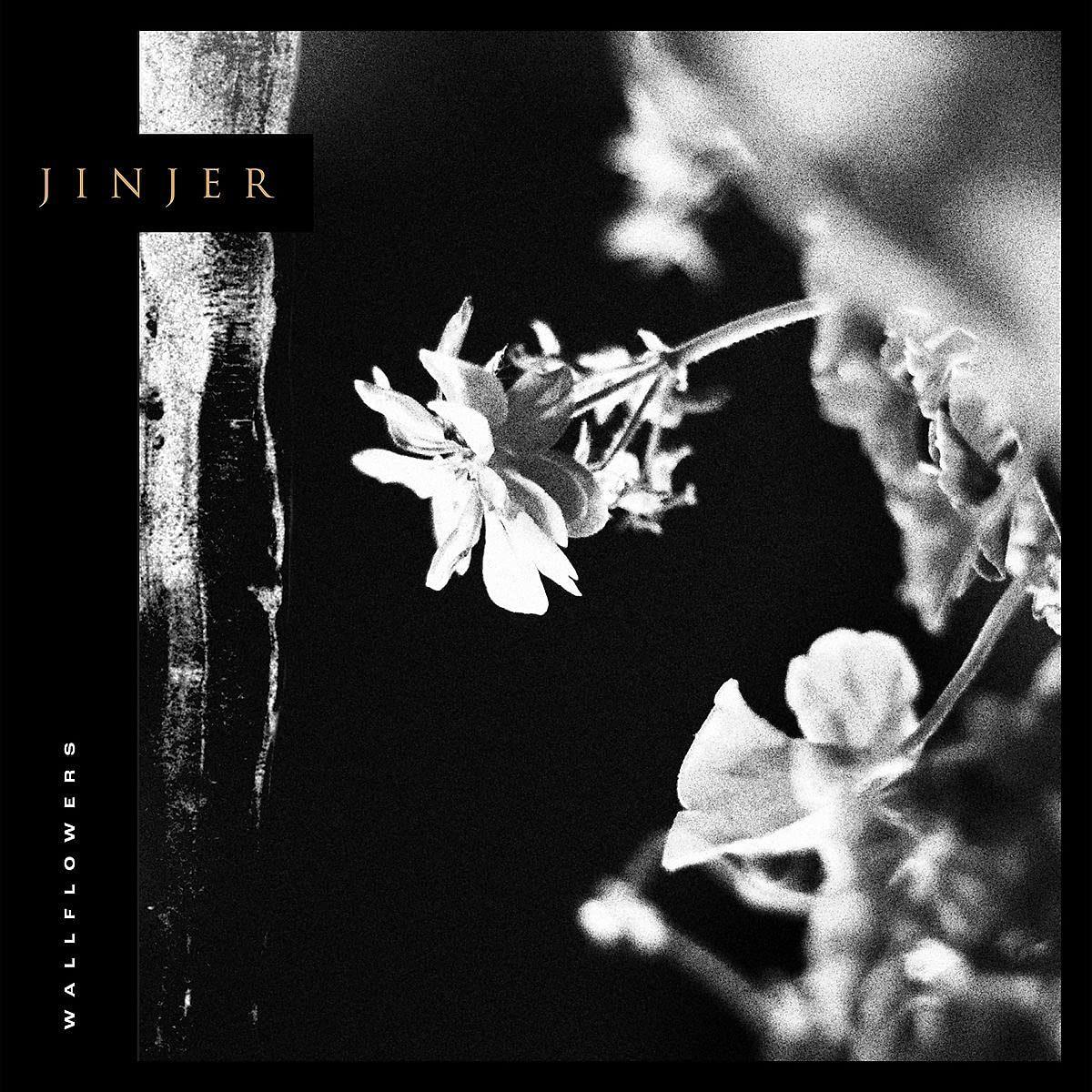Chroniques culture : le metal de Jinjer, dinos philo en BD et «Pitche ta saison»