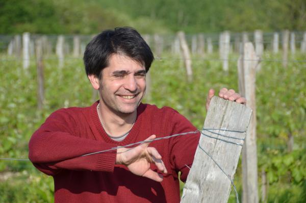 """""""La conversion à l'agriculture biologique m'a permis de redécouvrir mes vignes"""""""