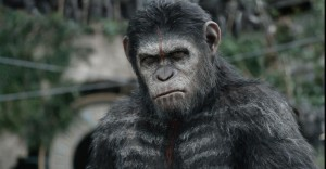 la-planete-des-singes-l-affrontement-dawn-of-the-planet-of-the-apes-30-07-2014-5-g